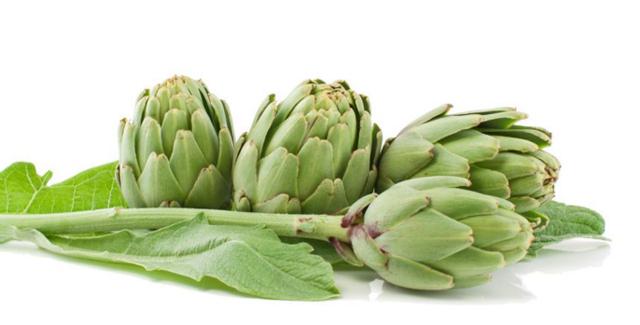 Comment bien se nourrir : la diététique pour une alimentation équilibrée et salutaire La-alcachofa-de-tudela